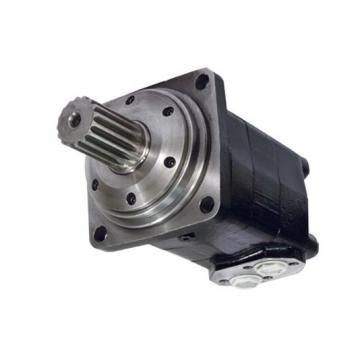 "Idraulico Motore 200,0 Cc / Rev P. T. O.Albero Maschio 1 3/8 """