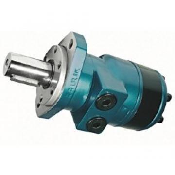 Flowfit Idraulico Doppio Agendo Standard Cilindro / RAM 60x30x700x940mm 1003/7