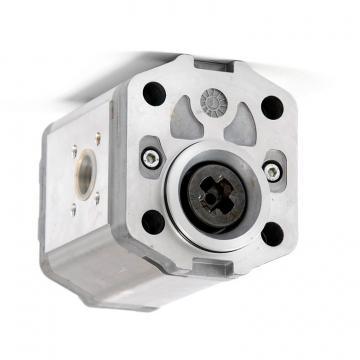 L0009629136 Linde Hydraulic Pump Repair Kit SK50200227JE
