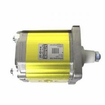POMPA standard di supporto del cuscinetto GRUPPO 2 rinforzato albero cilindrico 2 CUSCINETTI