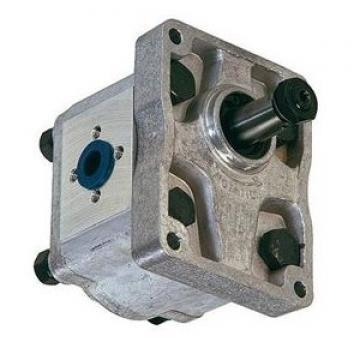 Pompa idraulica per trattore e spaccalegna GR2 C 55 DX