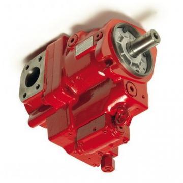 6671521 Nuovo Caricatore idraulico Doppio Pompa ad Ingranaggi 11 Albero Scanalato realizzato per adattarsi Bobcat