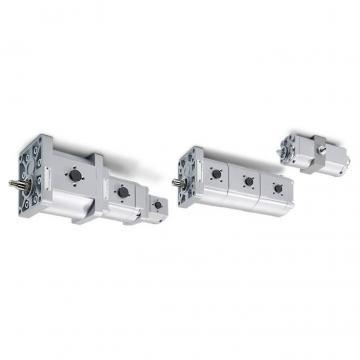 NUOVA pompa idraulica trattore completa per Bobcat 753 Skid Steer 6669385 6667723