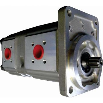 POMPA idraulica per Bobcat S300 S250 6686707